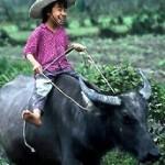 VIETNAM HERITAGE - SAI GON CU CHI
